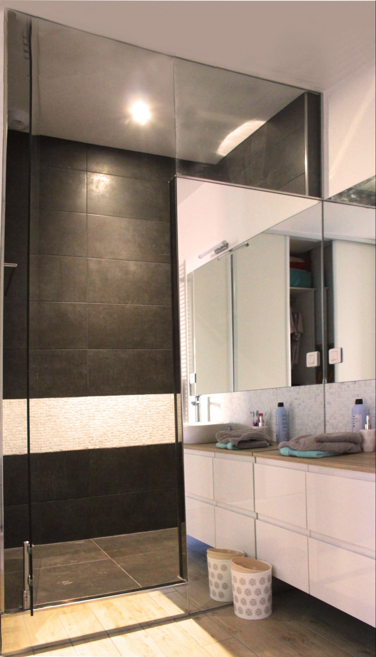 Rénovation d'un appartement de type haussmanien : 6 douche